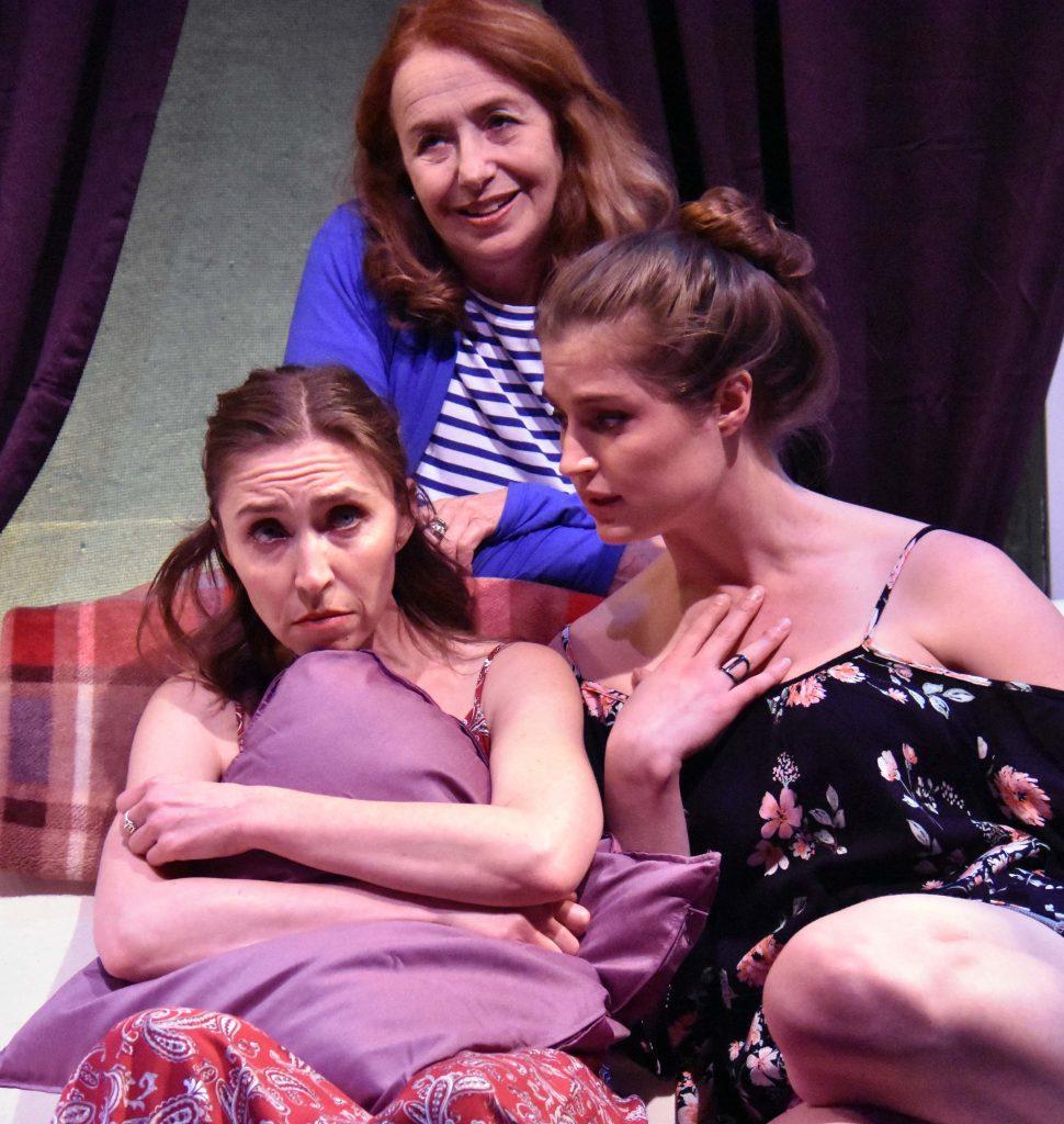 Teri Whipple, Linda Ayres-Frederick, and Amanda Farbstein